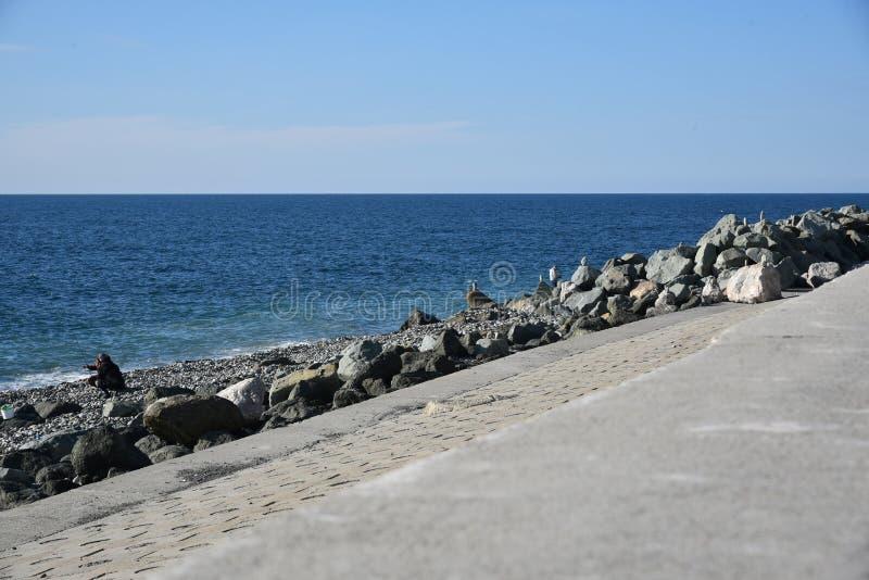 Bulwar Olimpijski park w Sochi, Adler, Rosja Podróż zdjęcie royalty free