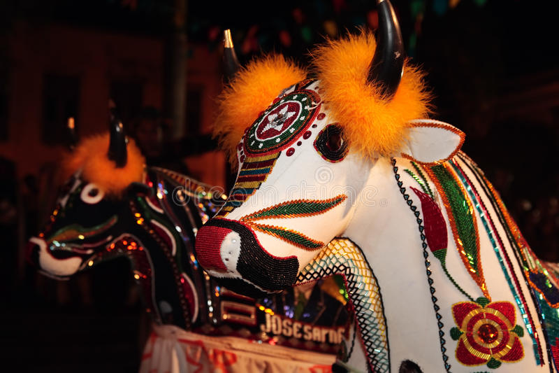 Bumba meu boi Festivalkarneval Brasilien lizenzfreie stockfotografie