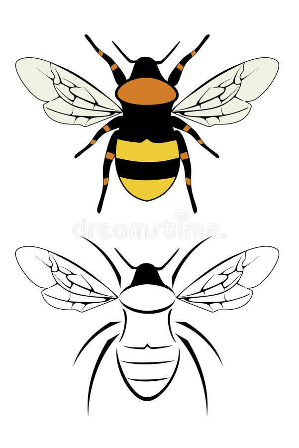 Bumble bee. A set of two bumble bees stock illustration