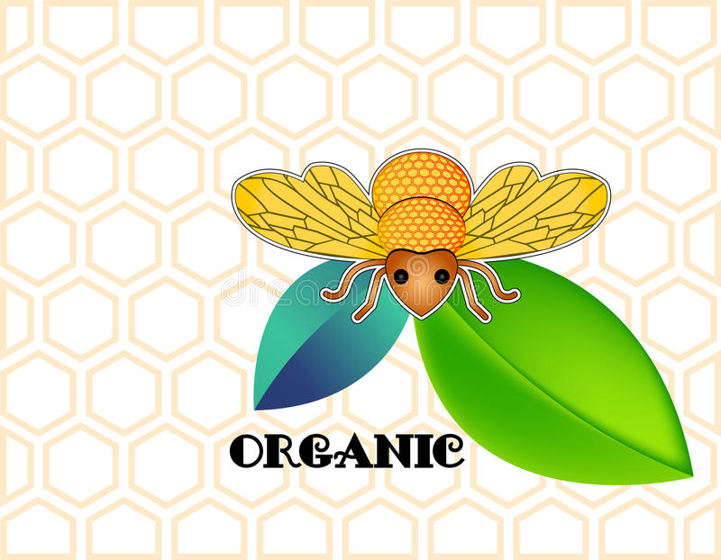 Download Honey bee stock vector. Image of bumble, funky, honey - 30124695