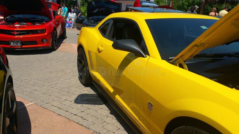 Bumblebee car show stock images