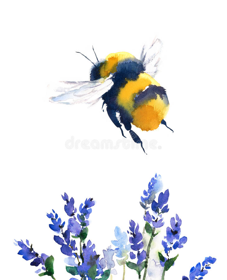 Bumblebee Flying Over Blue Flowers Watercolor Illustration Hand Drawn vector illustration