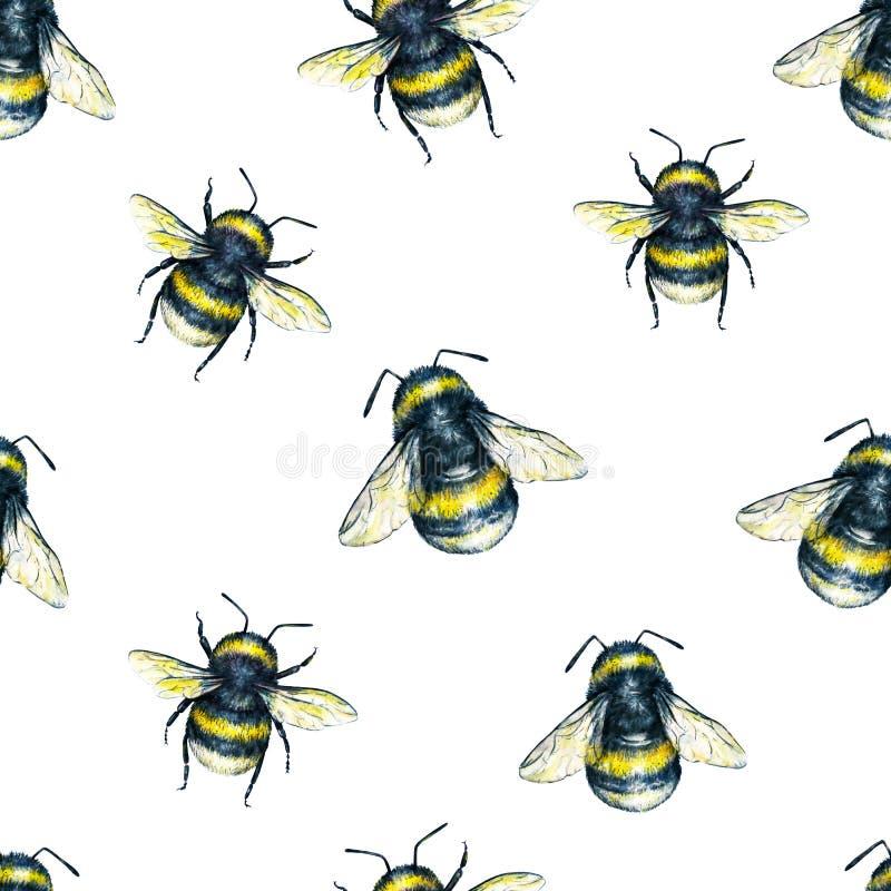 Bumblebee na białym tle banki target2394_1_ kwiatonośnego rzecznego drzew akwareli cewienie Insekt sztuka handwork Dla projekta b ilustracja wektor