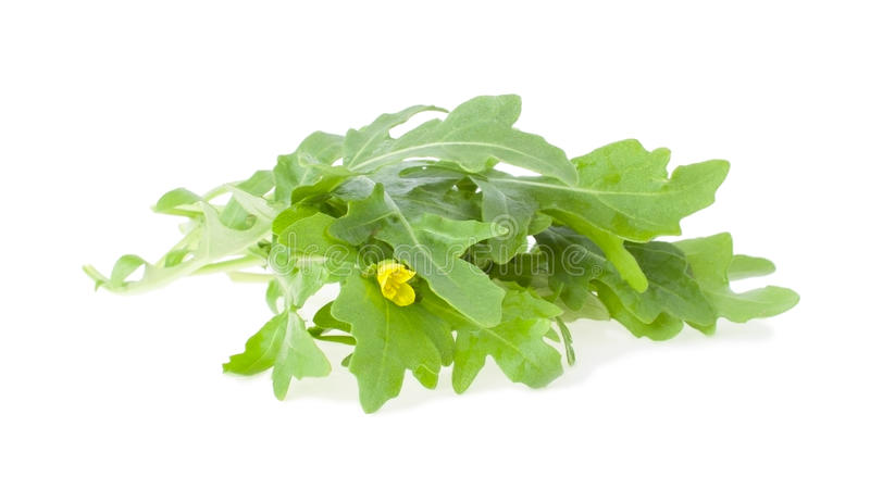 The Bunch of Arugula. With Yellow Flower, Isolated royalty free stock photo
