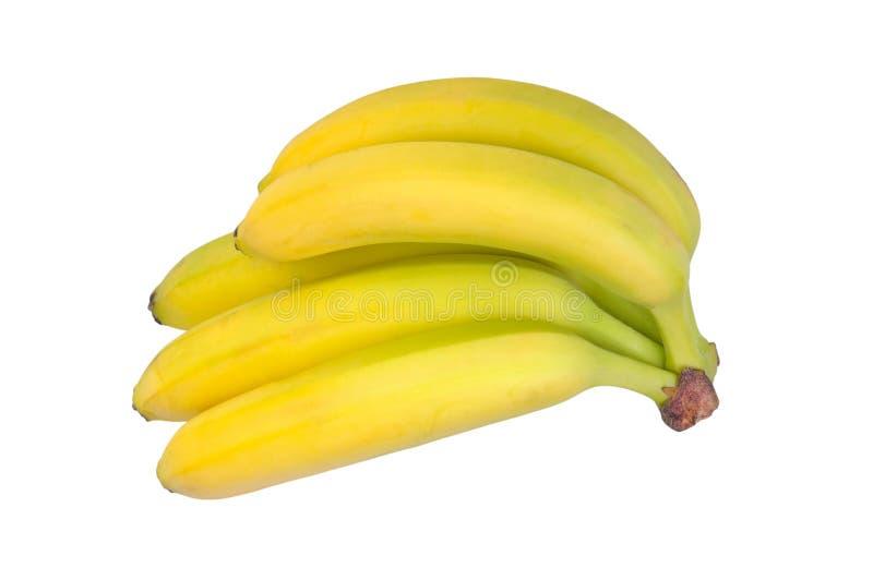Download Bunch Of Bananas Stock Photo - Image: 21476670