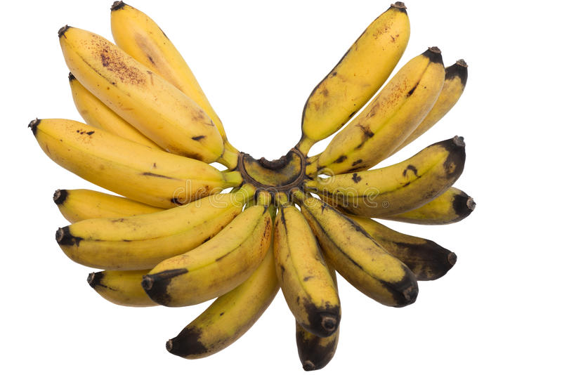Download Bunch of bananas stock photo. Image of background, food - 26197298