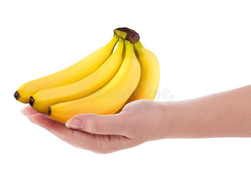 Bunch of bananas on hand royalty free stock photography
