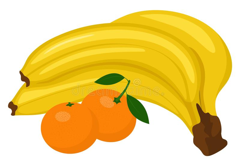 Bunch of bananas and Tangerine or clementine with green leaf isolated on white background. Vector illustration royalty free illustration