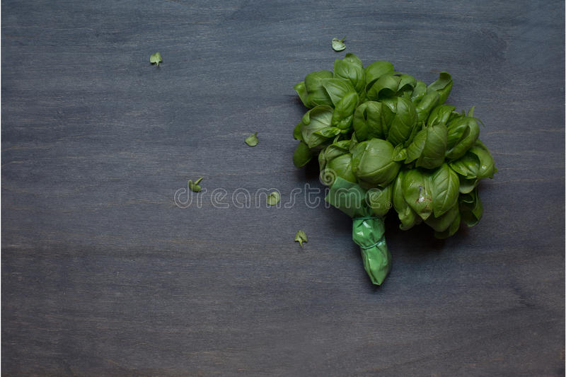 Bunch of basil royalty free stock images