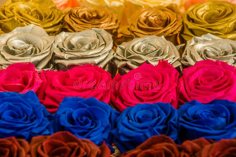 Bunch of beautiful and colorful different type of flowers.  stock photos
