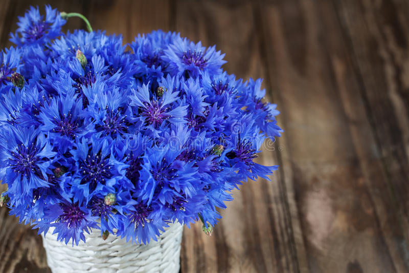 A bunch of beautiful summer flower of Cornflower in the white bu. Cket stock photos