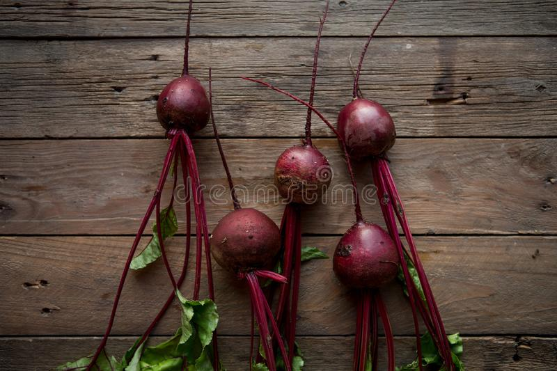 A bunch of beetroots . Fresh carrots, beetroot  heap with green stems. Raw Carrots and beetroot on rustic  wooden back stock image