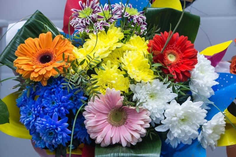 bunch of big fresh orange pink red gerbera chamomile and big white yellow blue chrysanthemum flower stock photo