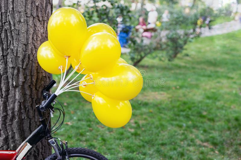 Bunch of bright yellow balloons with bicycle near big tree in city park. Green grass on background. Bike party and event outdoors stock photo