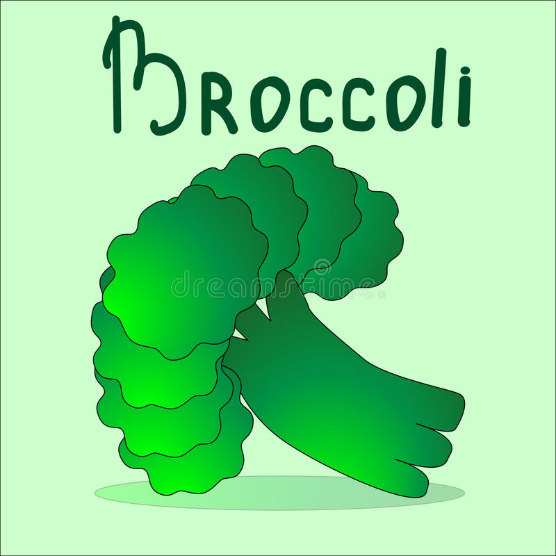 Bunch of broccoli at the light green background. Draw your salad yourself stock photo