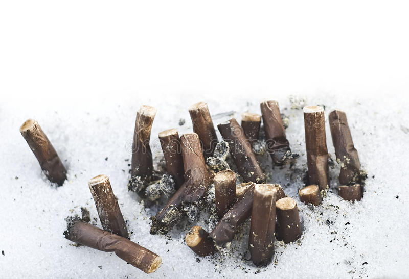 Bunch of brown cigarette butts in snow royalty free stock image