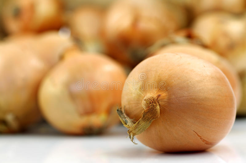 Bunch of brown onions royalty free stock image