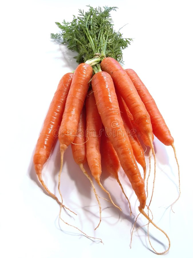 Bunch of Carrots. Isolated on white stock image