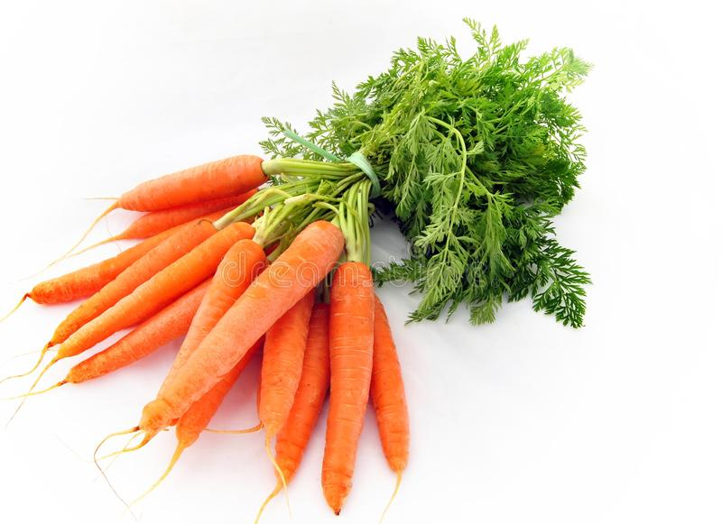 Bunch of carrots royalty free stock photos