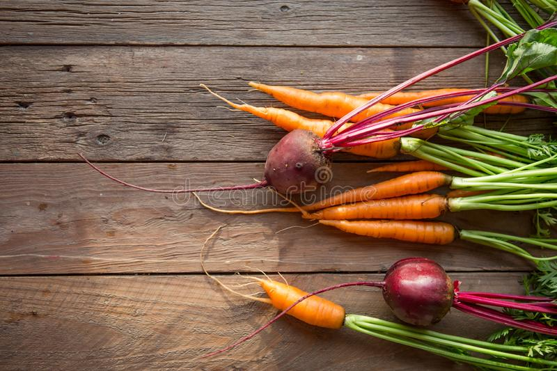 A bunch of carrots and beetroots . Fresh carrots, beetroot  heap with green stems. Raw Carrots and beetroot on rustic  wooden back stock images