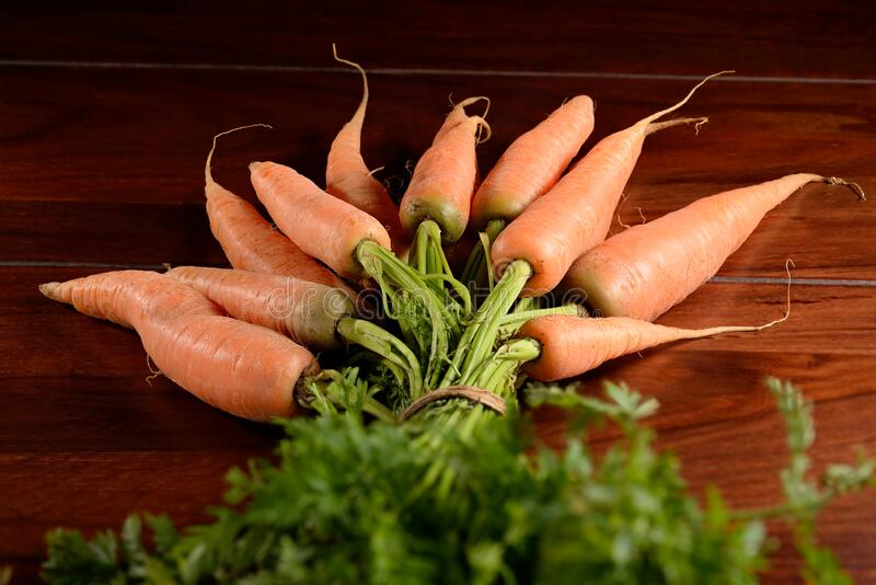 Bunch of carrots with foliage on brown wooden table. Close-up on organic unpeeled raw carrots with their green leaves attached into a bunch. A brown wooden stock photos