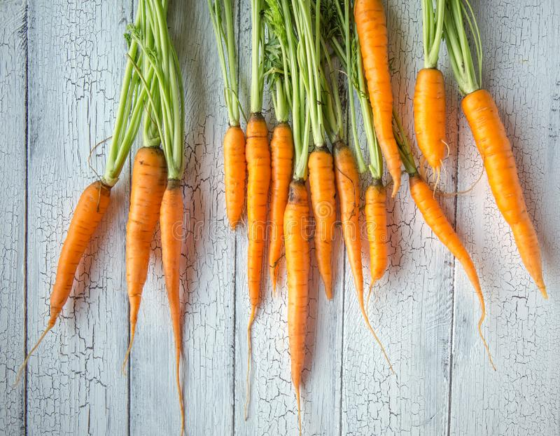 A bunch of carrots . Fresh carrots, beetroot  heap with green stems. Raw Carrots and beetroot on rustic  wooden back royalty free stock photos