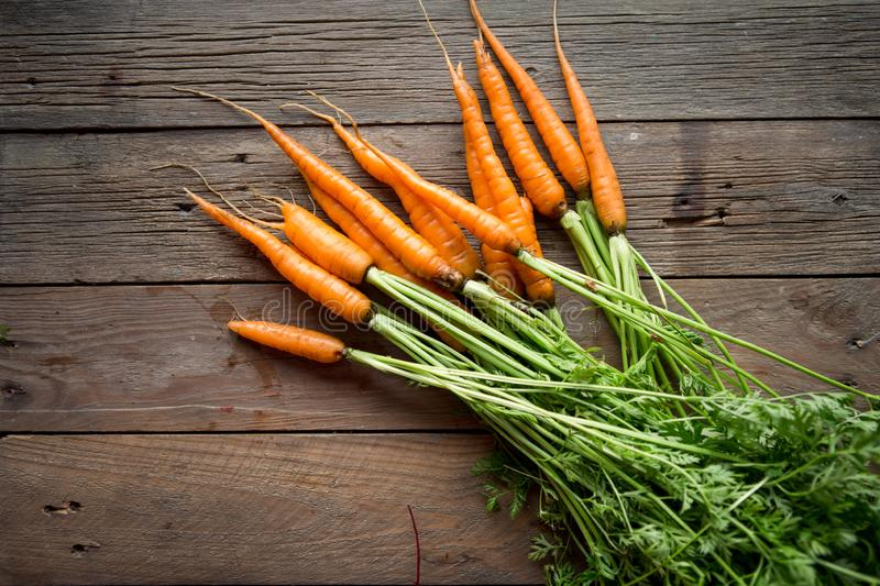 A bunch of carrots . Fresh carrots, beetroot  heap with green stems. Raw Carrots and beetroot on rustic  wooden back royalty free stock photography
