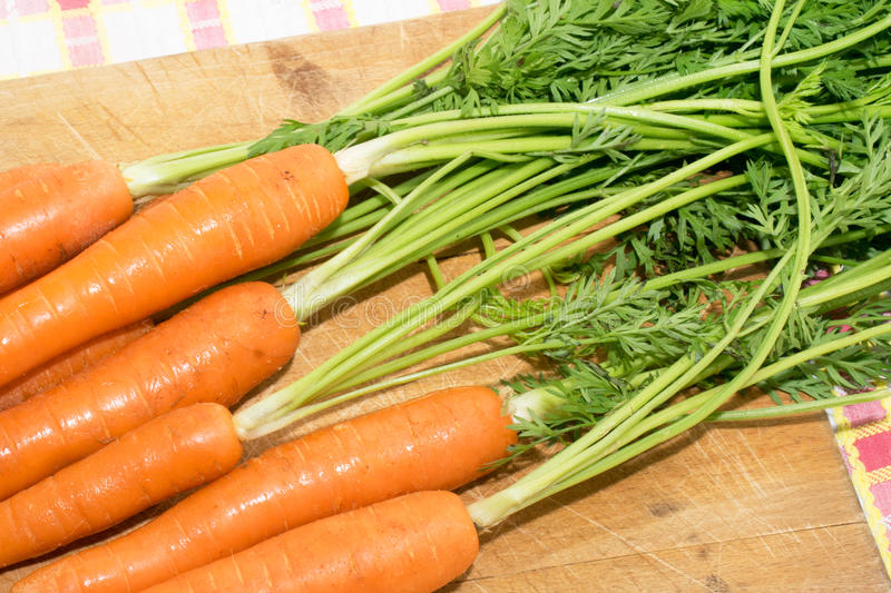A bunch of carrots royalty free stock photography