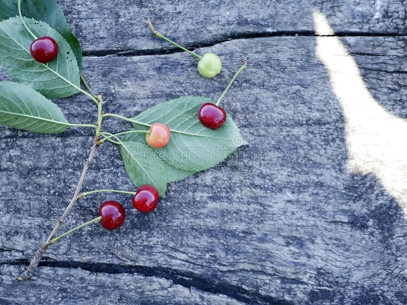 A bunch of cherries on a gray wooden background stock photography