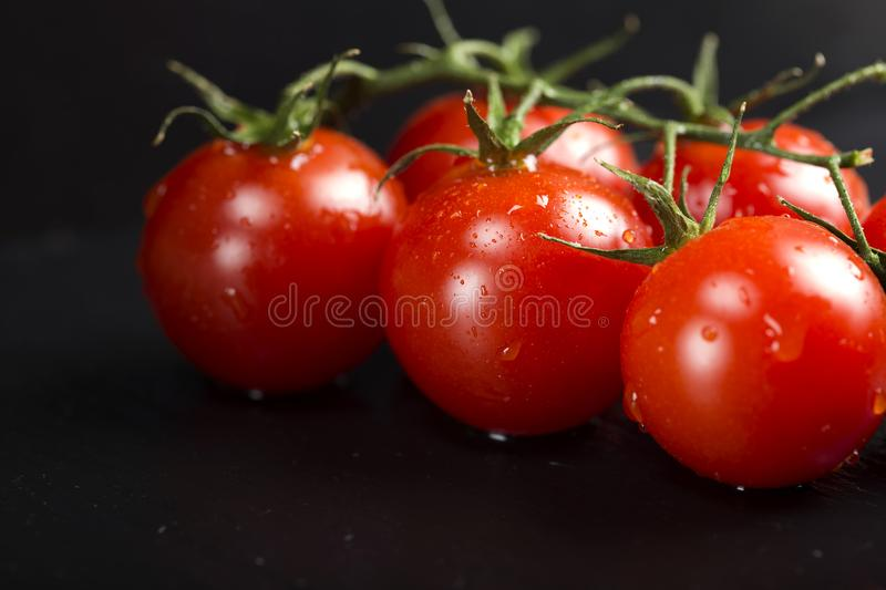 Bunch of cherry tomatoes with water drops on dark slate royalty free stock image