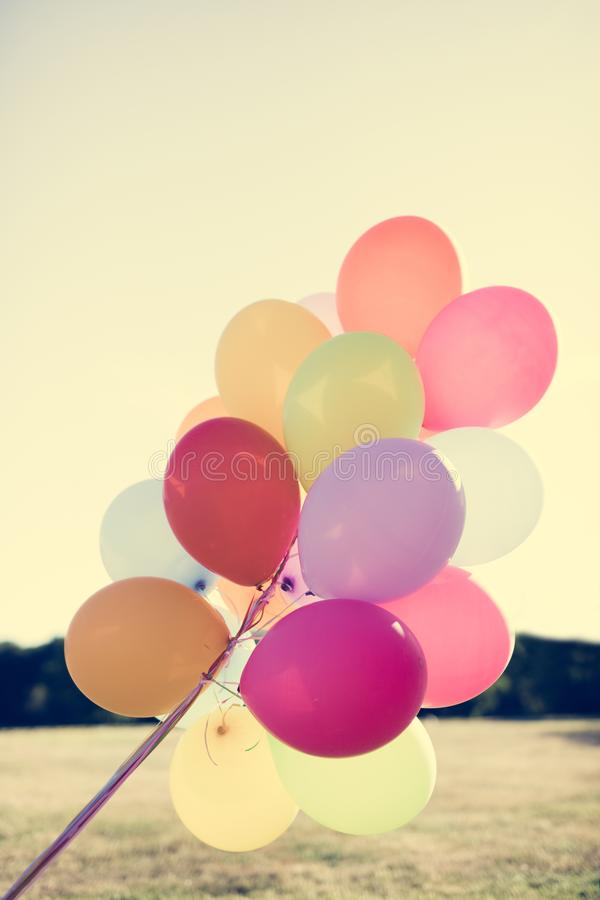 Bunch of colorful balloons flying in the park. Party decorations and celebration stock photography