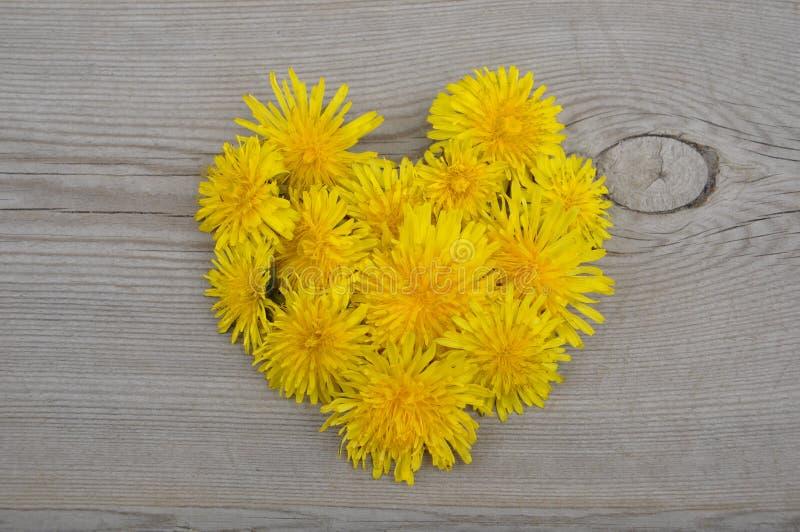 Heart shaped yellow flowers stock photo image of lover flora download heart shaped yellow flowers stock photo image of lover flora 32362618 mightylinksfo