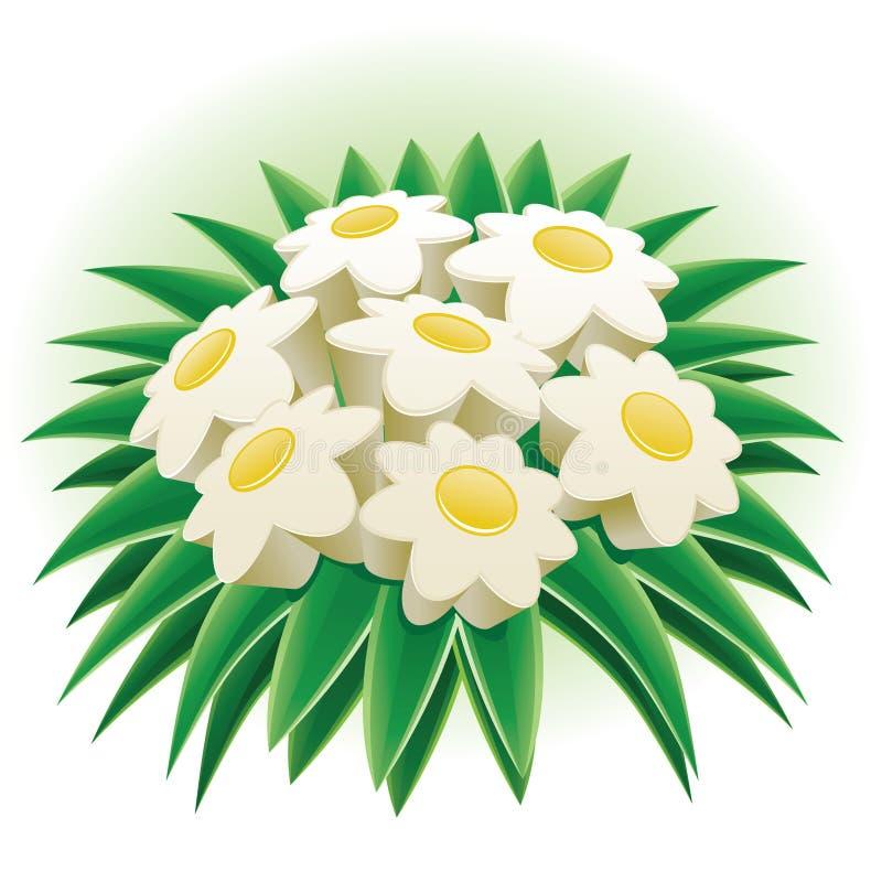 Bunch of daisy. vector illustration