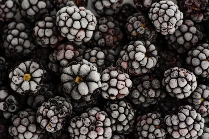 Bunch of frozen blackberries close up stock photos