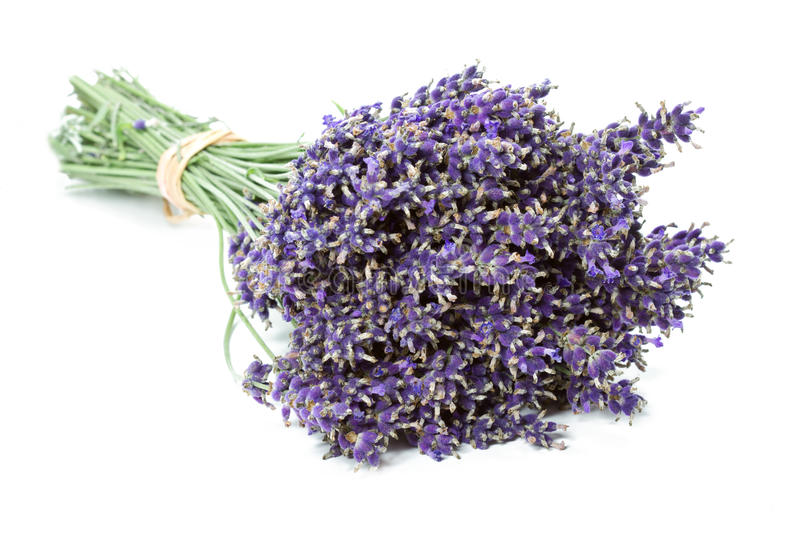 Bunch Of Dried Lavender Stock Photo