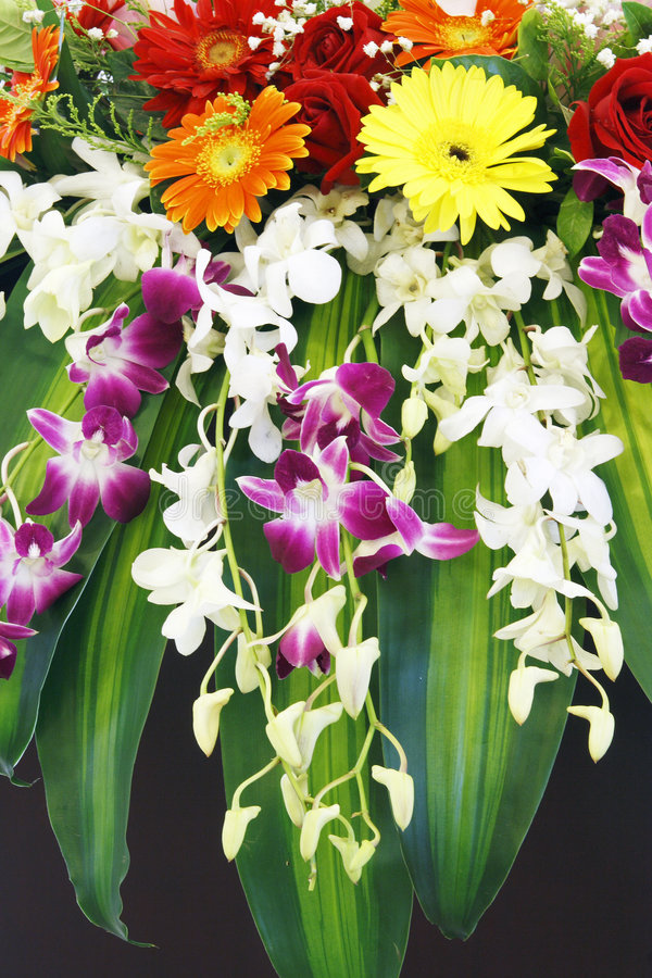 A bunch of flowers. royalty free stock photography