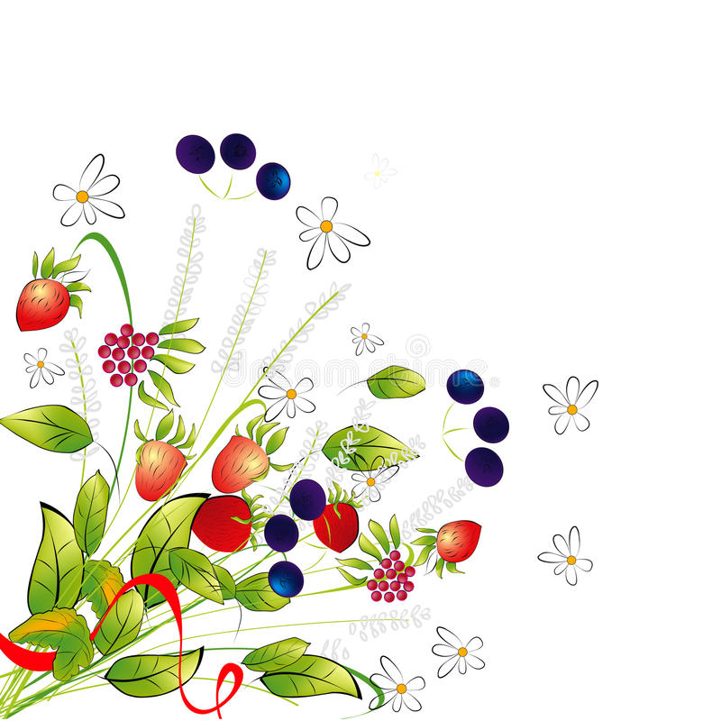 Download Bunch Of Flowers And Berries Stock Vector - Image: 20251389