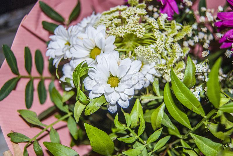 Bunch of flowers. A very Beautiful Bunch of flowers royalty free stock images