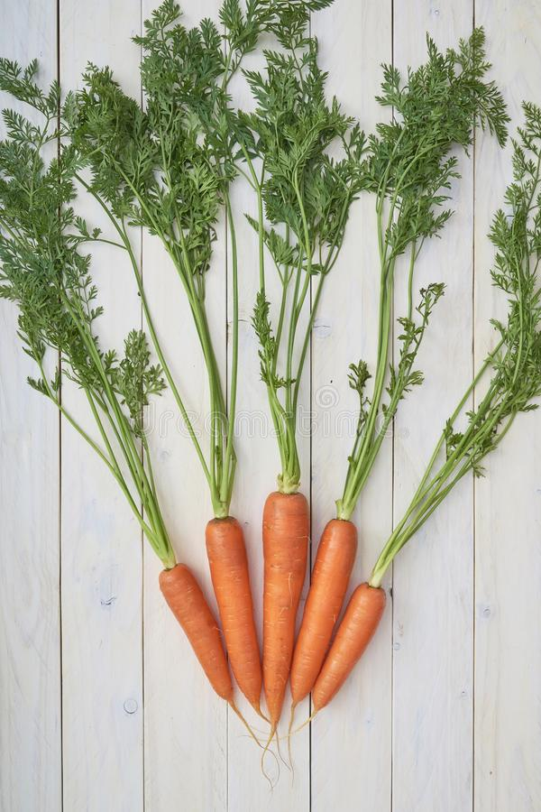 Bunch of fresh carrots with green leaves over white wooden background. Veggies. Organic vegetables. Natural farm products stock images