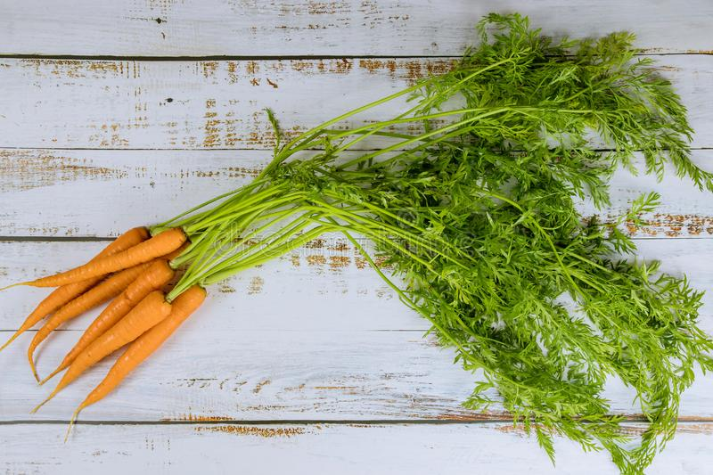 Bunch of fresh carrots with green leaves on white background stock images