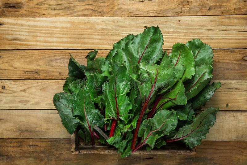 Bunch of fresh crispy green beet leaves in box on wood table background. Healthy vegan plant based diet vitamins. Eat your greens. Concept. Rustic style copy royalty free stock images