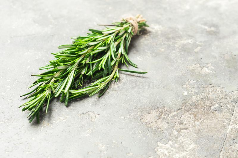 A bunch of fresh fragrant rosemary on a gray concrete background. Copy space. royalty free stock image