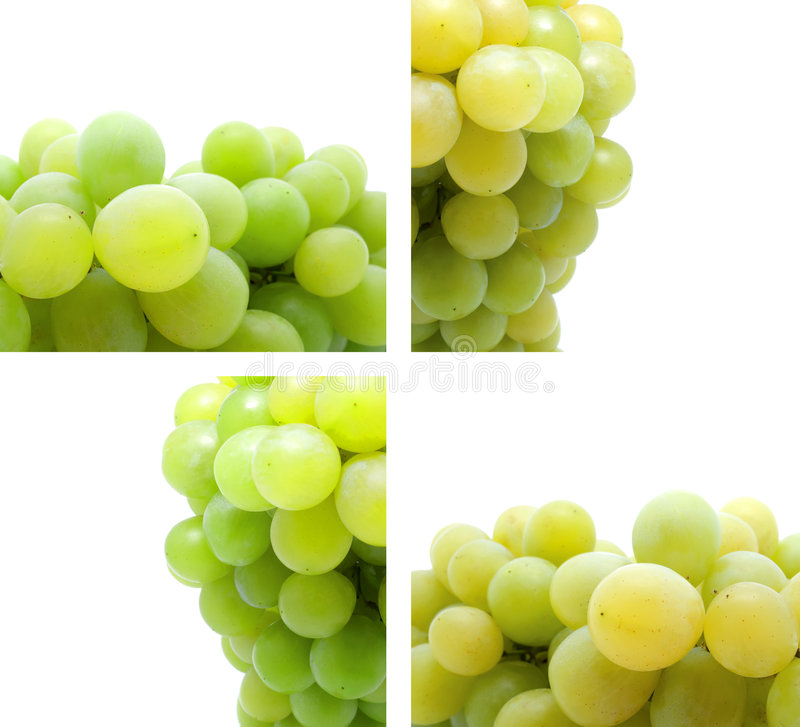 Bunch of fresh grapes royalty free stock photography