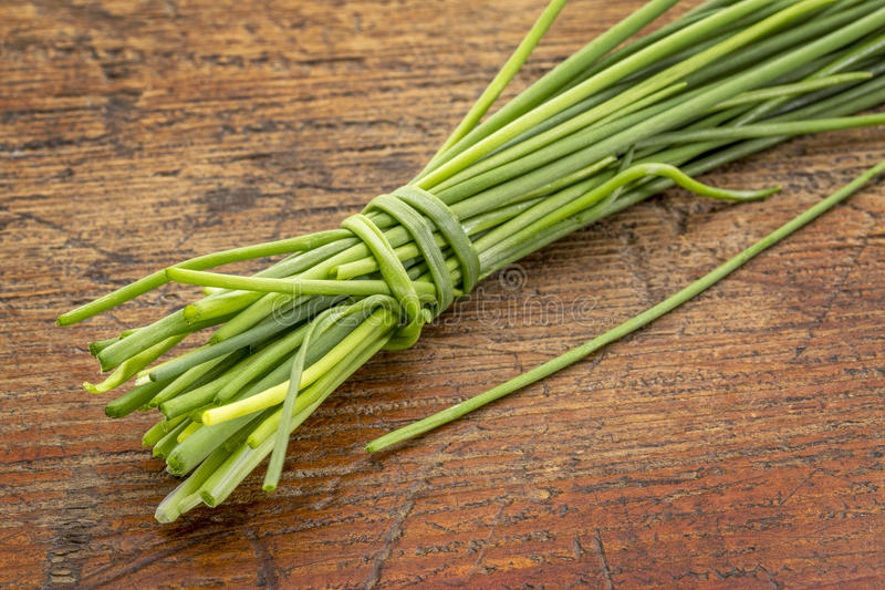 Bunch of fresh green chives royalty free stock image