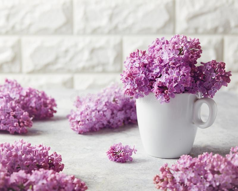 A bunch of fresh lilac at home royalty free stock photo