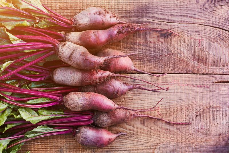 Bunch of fresh organic beetroots on wooden rustic table. A half of a wooden table is free for the Paste Free space for stock photos