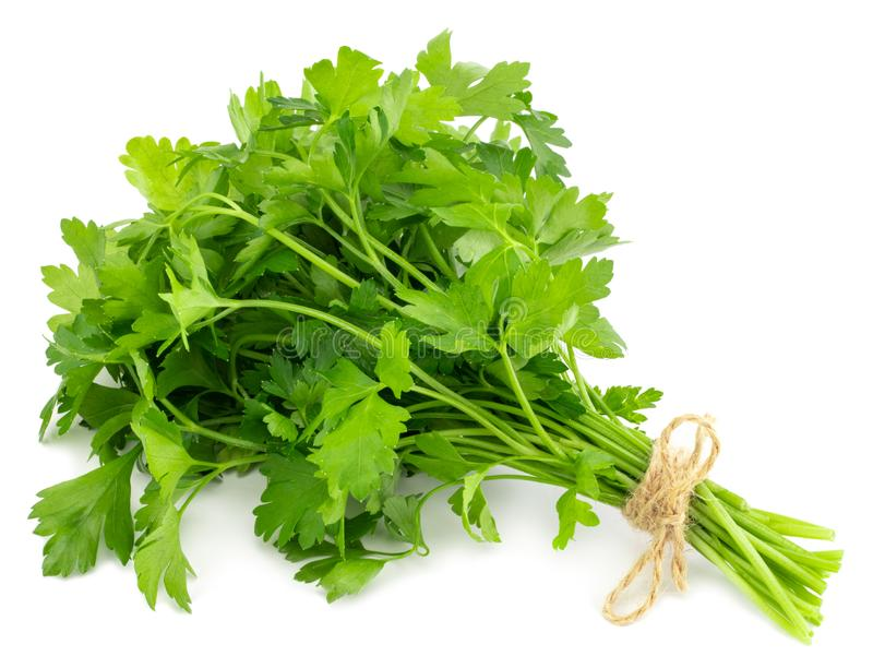 Bunch fresh parsley isolated on white background royalty free stock photos