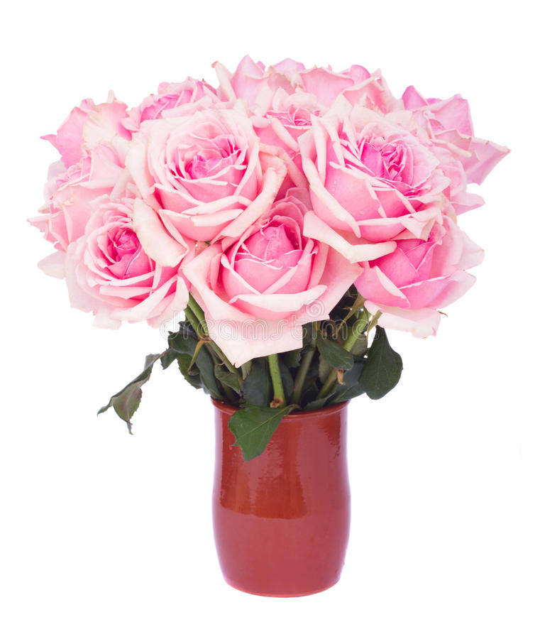 Bunch of fresh pink roses stock image