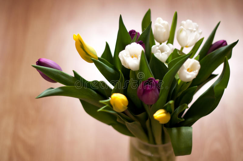 Bunch of fresh purple, yellow and white tulip flowers in a vase close up stock images