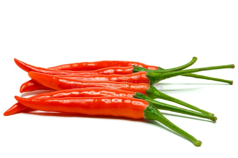 Red chilli peppers. A bunch of fresh red hot chilli peppers isolated on white background stock photo